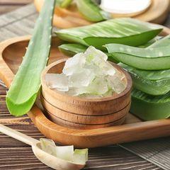 Aloe-Vera-Gel selber machen: Aloe vera mit Holzschale