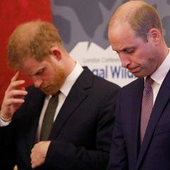 Prinz Harry und Prinz William: Das steckt wirklich hinter ihren Spannungen