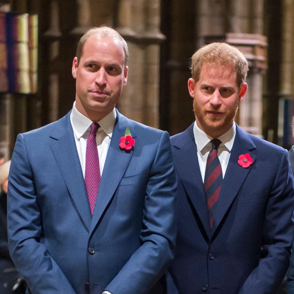 Royals: Prinz William + Prinz Harry melden sich auf Twitter zu Wort