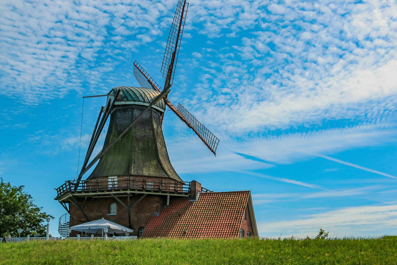 Sommer 2020: Windmühle