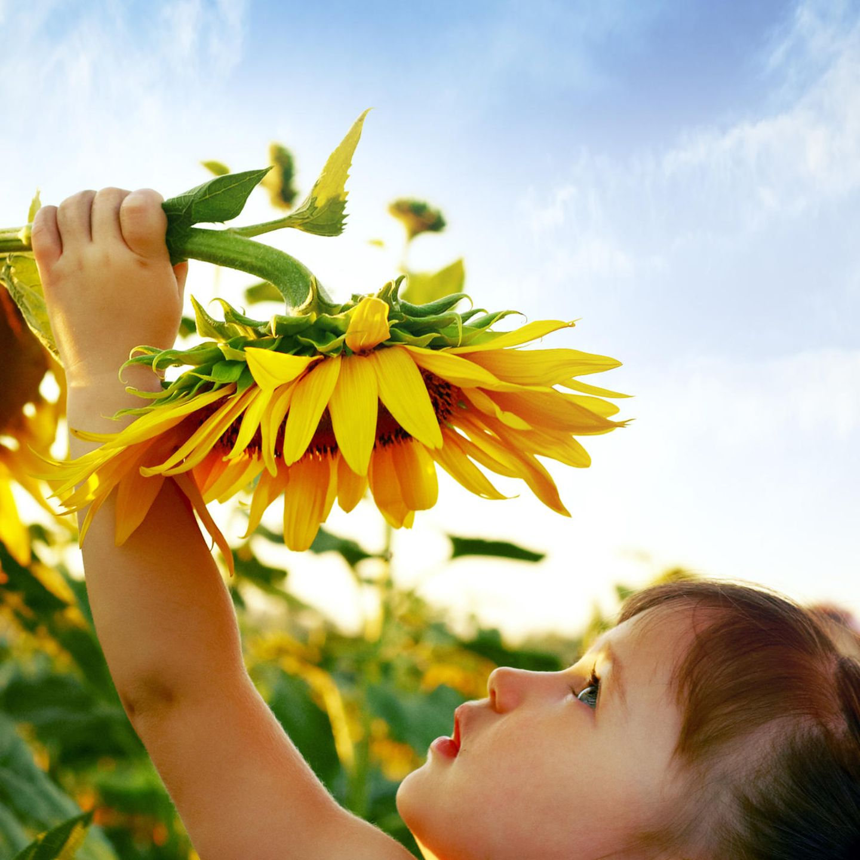 Kleinkinder: Kleines Mädchen mit Sonnenblume
