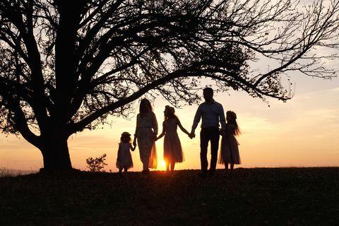 Fragiles Konstrukt: Familie unter Baum