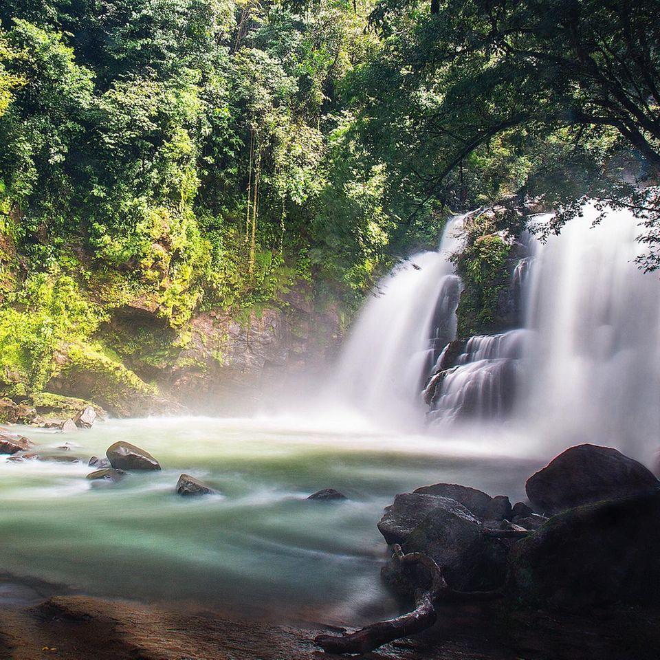 Costa Rica ist eine Reise wert.