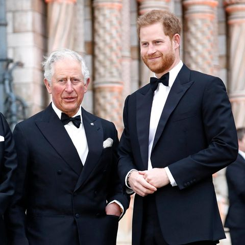 "Prinz Charles: ""Felsenfeste"" Beziehung zu Prinz Harry"