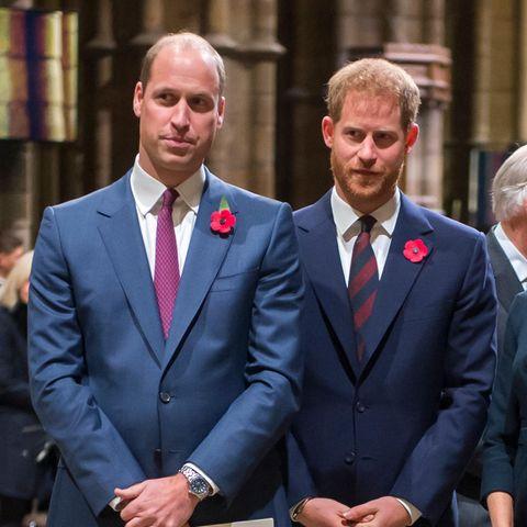 """Prinz Harry: William warf ihm vor, """"blind vor Lust"""" gewesen zu sein"""