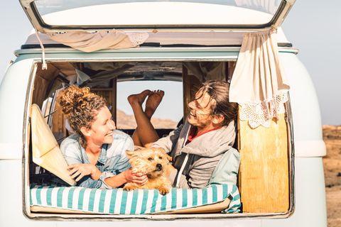Reisen mit Hund, Pärchen, Hund, Auto, Bus