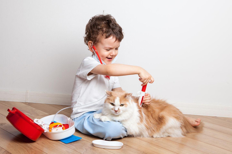 Kindergesundheit: Kind spielt Arzt mit Katze
