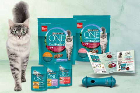 Gewinnspiel: Jetzt mit Purina ONE ein Produktpaket für Katzen gewinnen