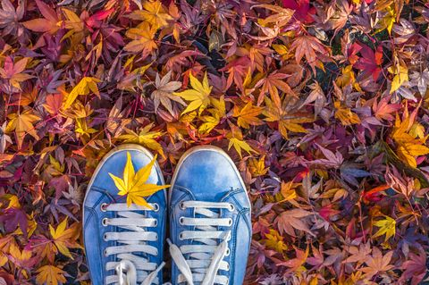 Sneakers auf Laub