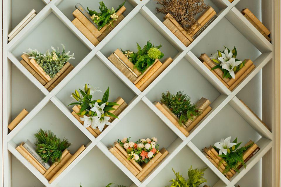 Bücher aufbewahren: Bücher und Blumen in einem Regal