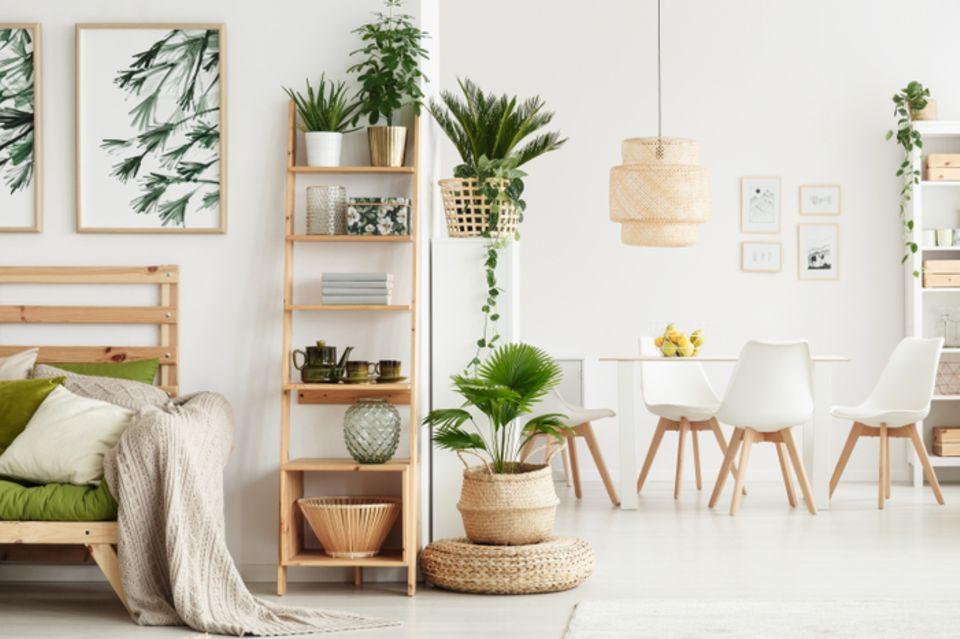 Bücher aufbewahren: Wohnraum mit Regalleiter