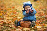 Erziehung: Kind mit Kastanien