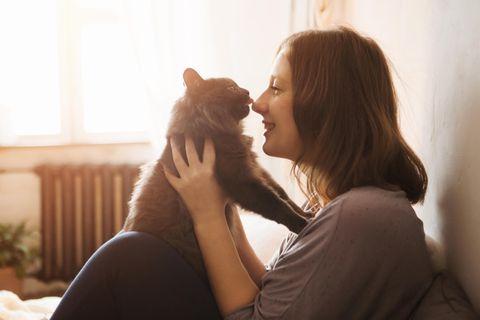 Darum solltest du Katzen langsam anblinzeln