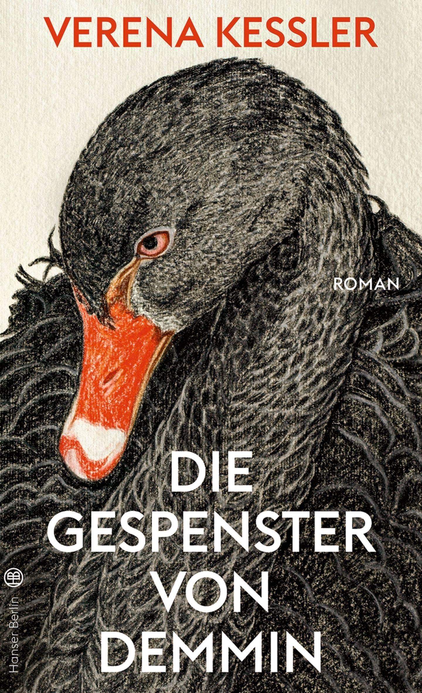 """Buchtipps der Redaktion: Buchcover """"Die Gespenster von Demmin"""""""