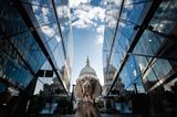 Haustier Fotowettbewerb: Hund zwischen Wolkenkratzern