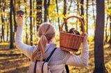 Eine Frau im Herbst beim Pilze sammeln