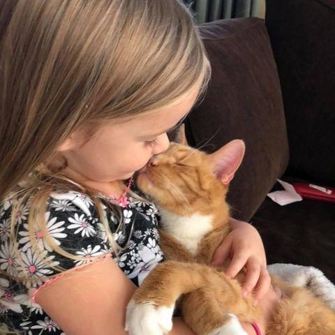Mädchen singt Abschiedslied für sterbende Katze