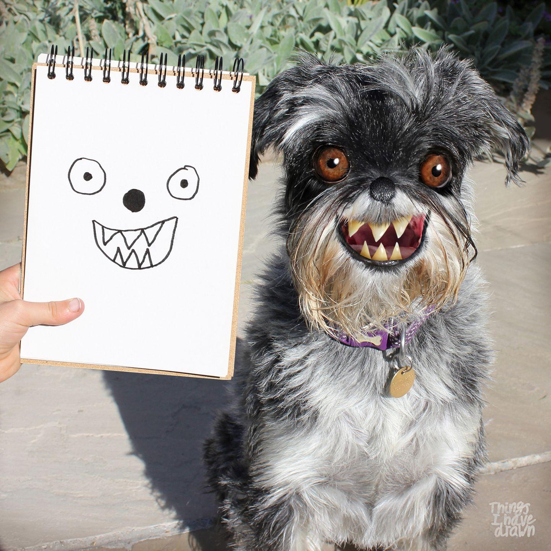Kinderzeichnungen in der Realität: ein Hund mit Zähnen