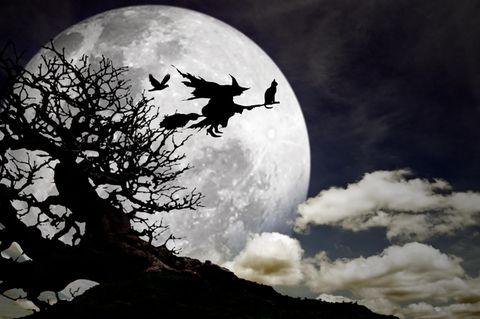 So beeinflusst der Halloween-Vollmond dein Sternzeichen