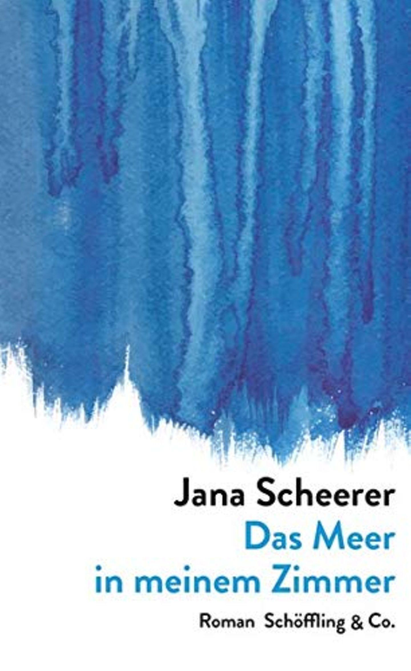 Das Meer in meinem Zimmer von Jana Scheerer