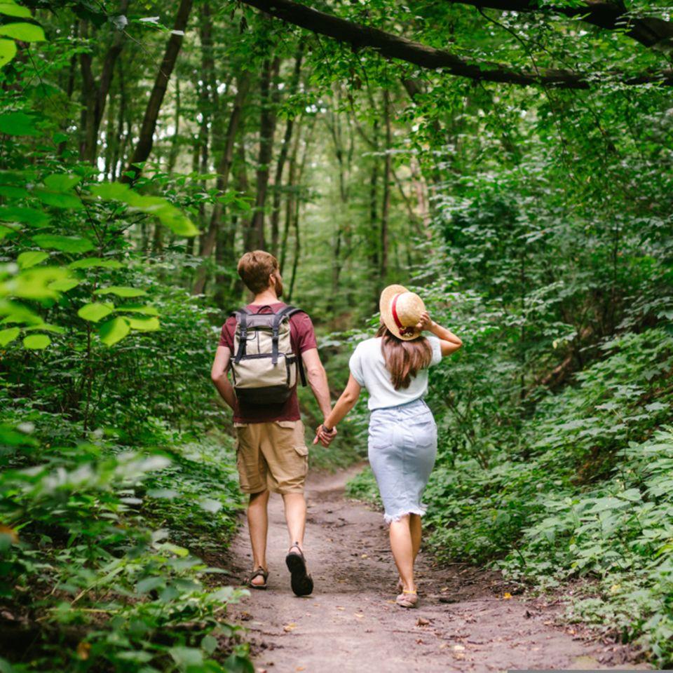 Sex im Wald: Pärchen im Wald