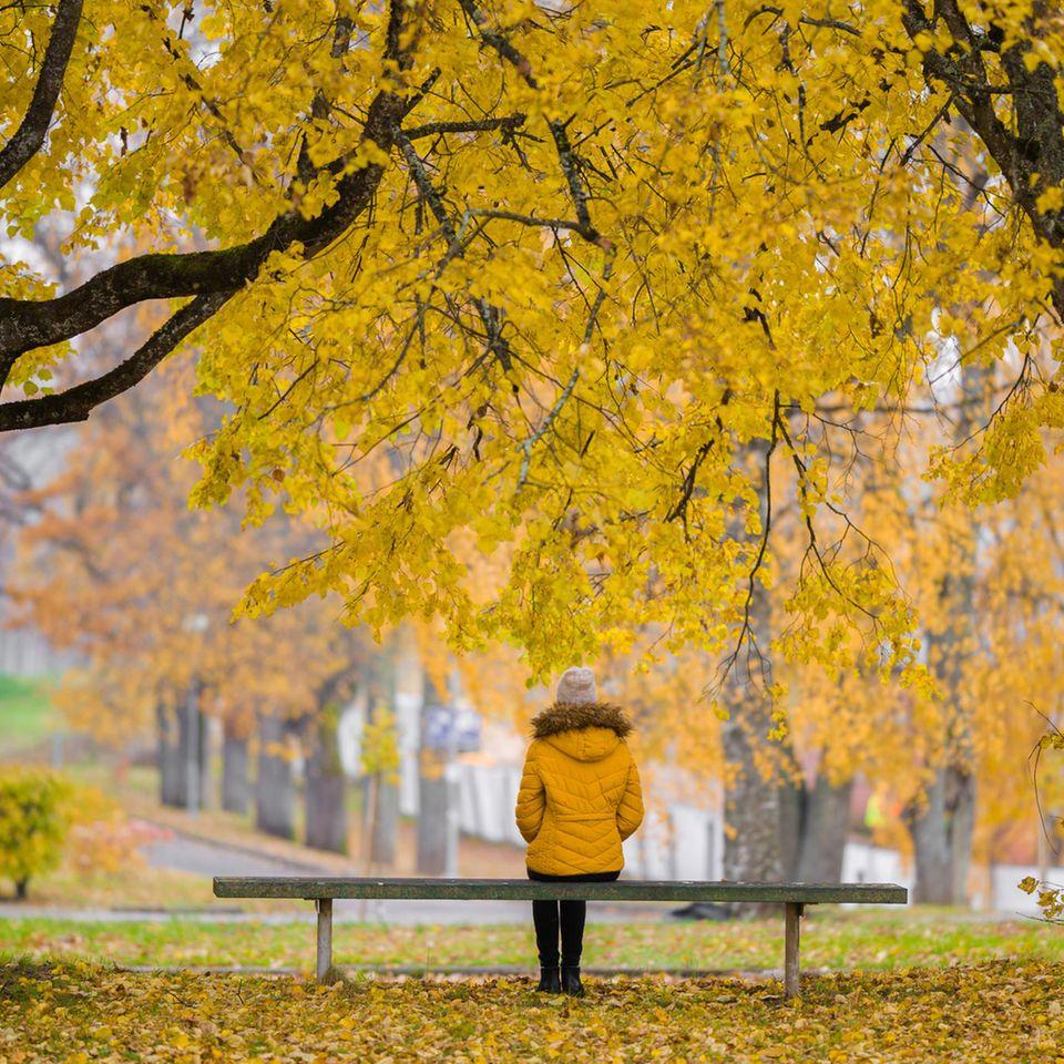 Lazy-Mind-Effekt: Eine Frau sitzt auf einer Bank im Herbst