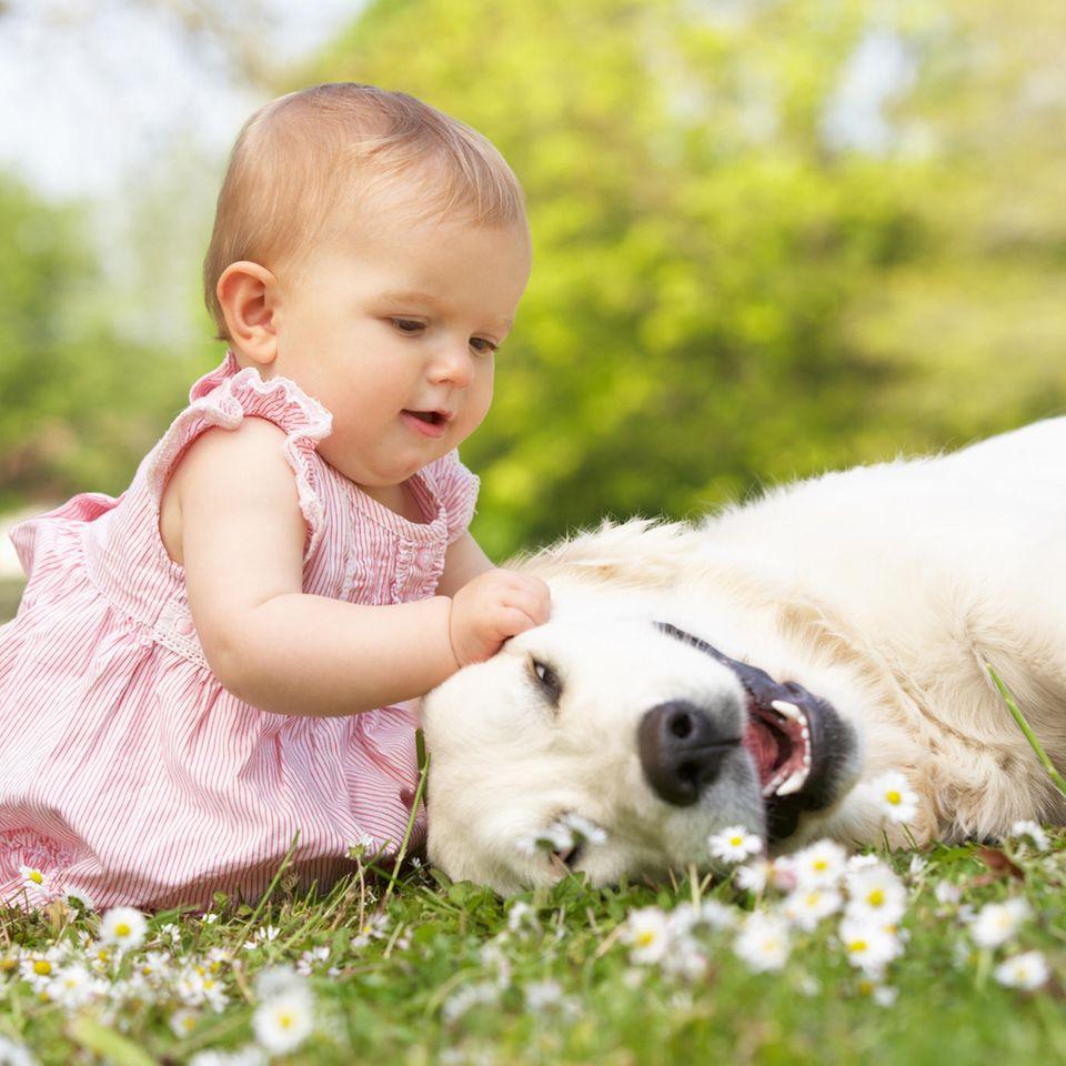 Mutter beschäftigt Baby und Hund