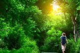 Corona aktuell: Waldspaziergang