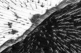 ILPOTY 2020: Schnee und Bäume von oben