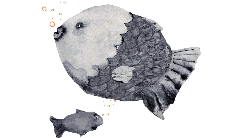 jahreshoroskop 2021 fische frau