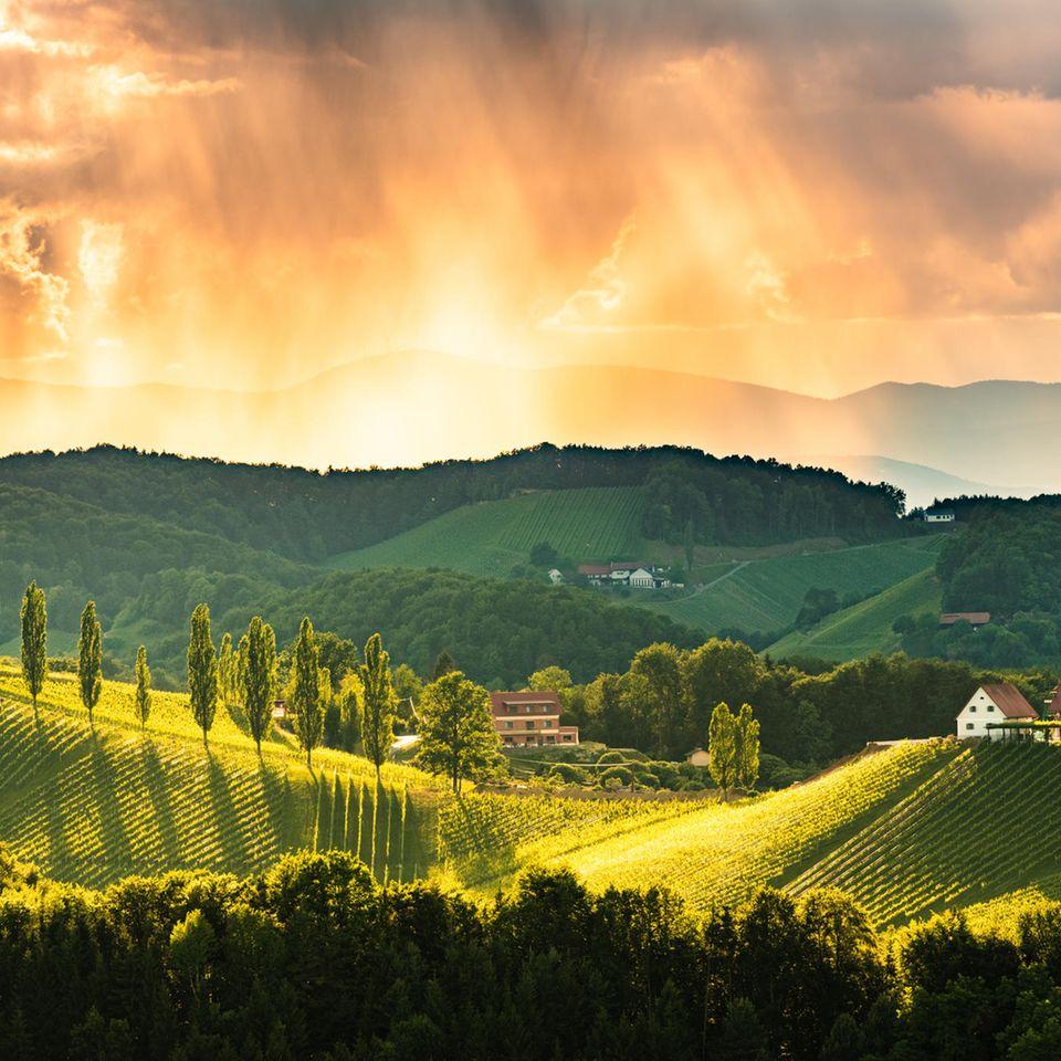 Südsteiermark: Landschaftsbild