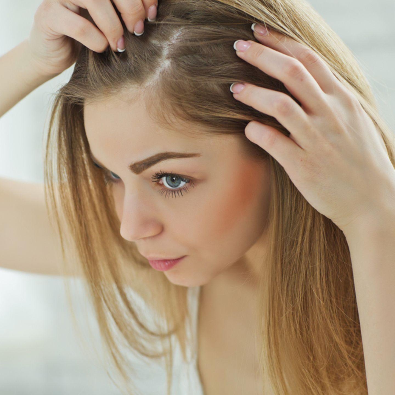 Frauen haarausfall forum Haarausfall bei