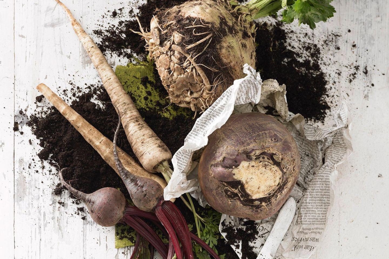Power-Gemüse für den Winter