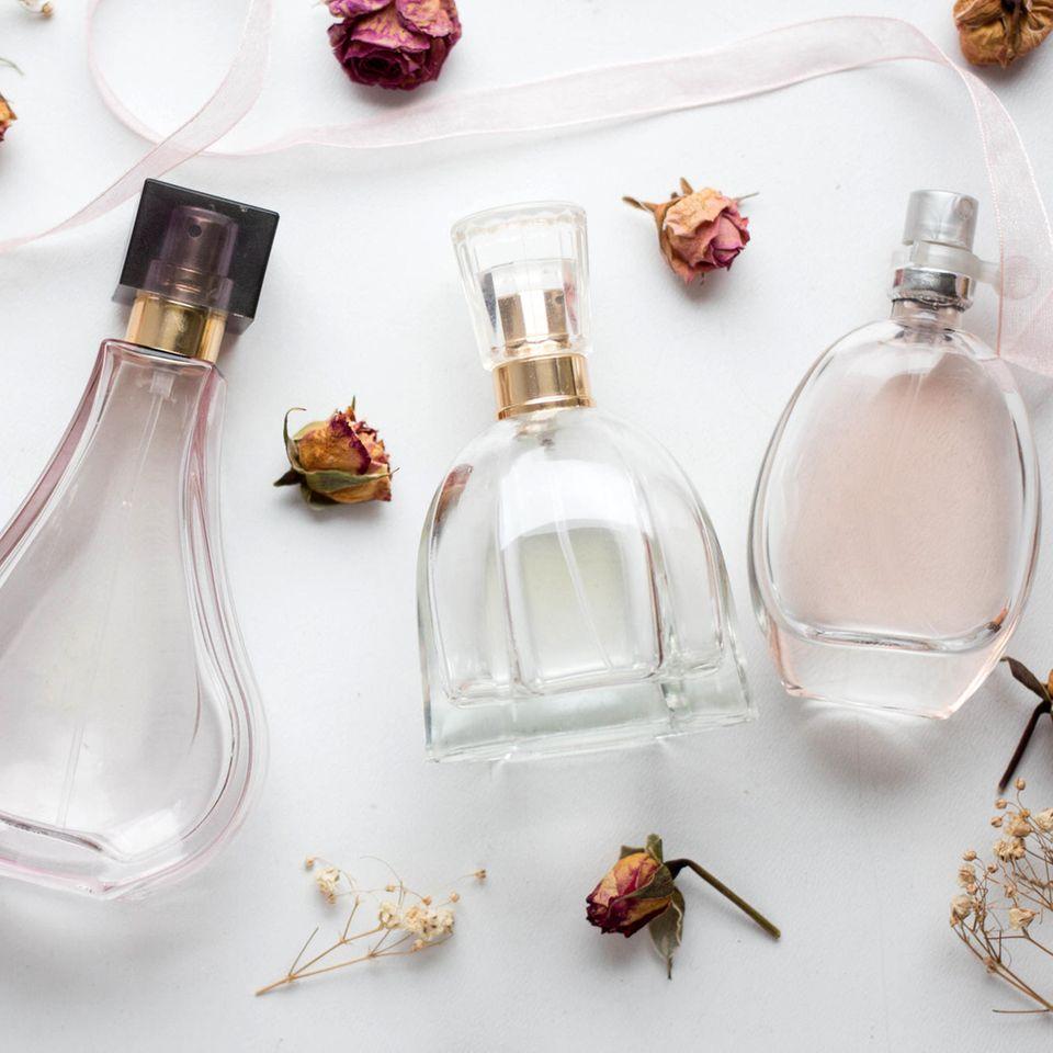 Parfum-Trends: Das sind die besten Düfte für die Winterzeit