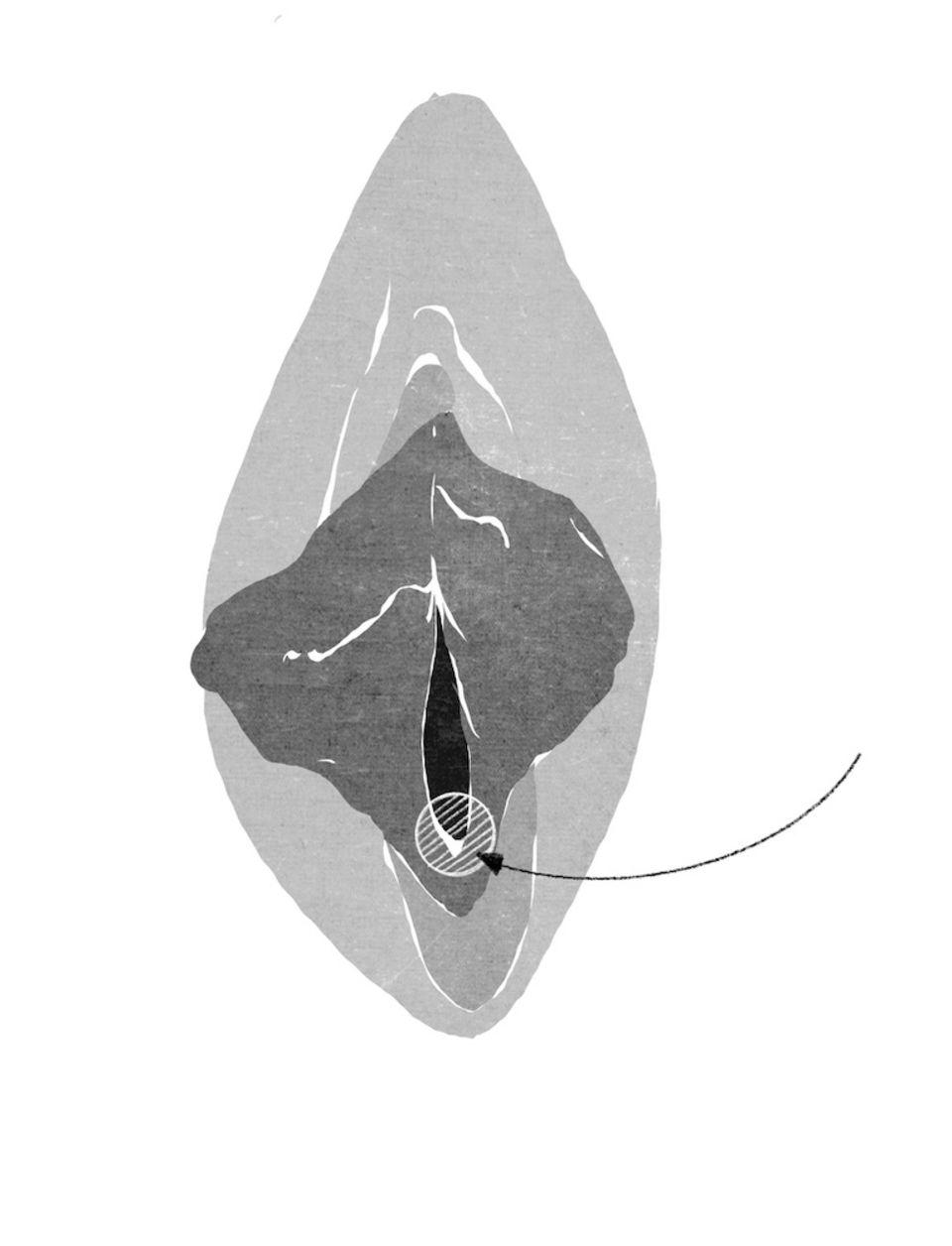 Illustration Vagina