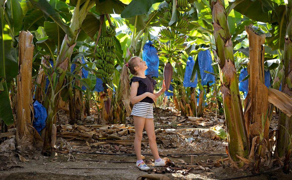 Zypern: Mädchen steht mitten in Bananenplantage
