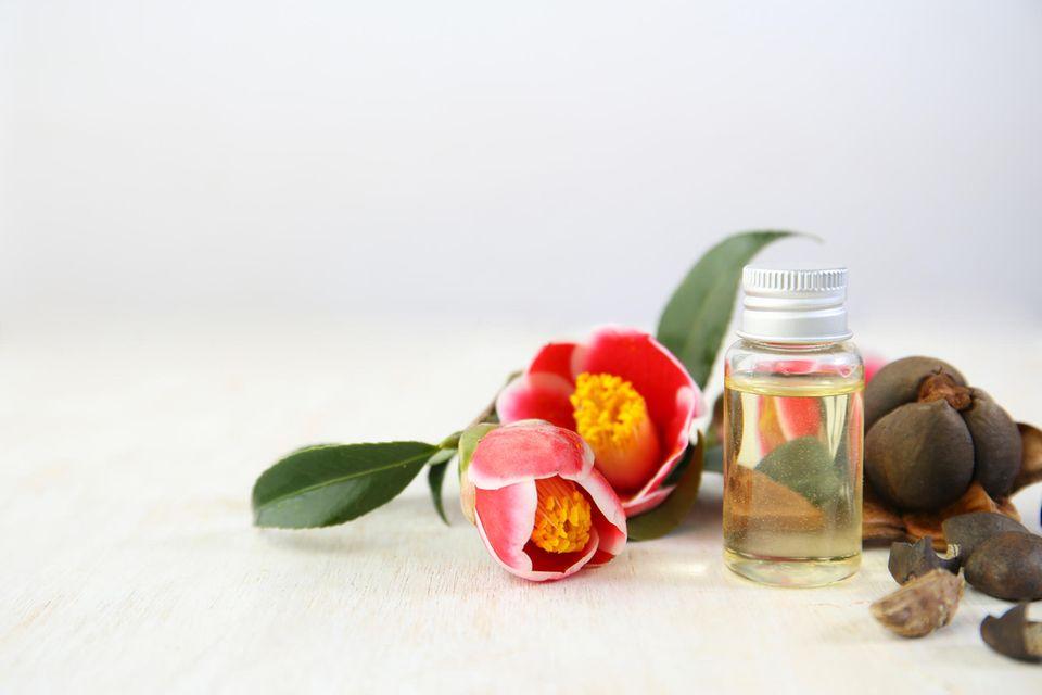 Kamelienöl: Blüten, Samen und Öl der Kamelie