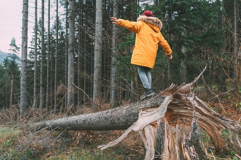 Celle: Ein kleiner Junge balanciert über einen Baumstamm