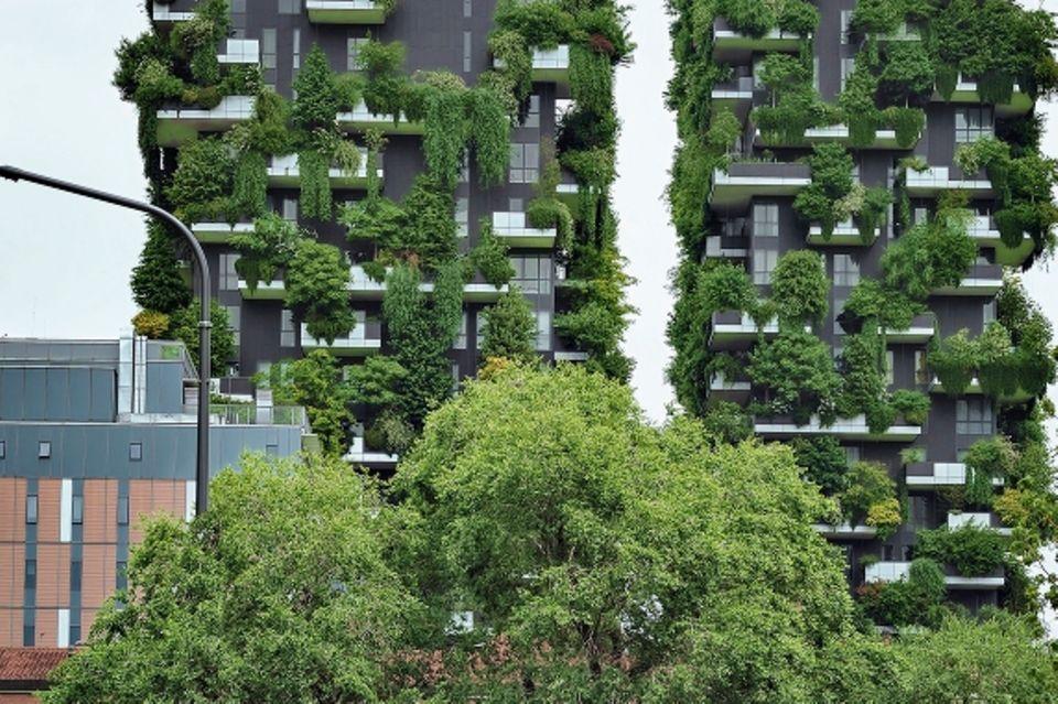 Beton und Grün. Bosco Verticale, senkrechter Wald, heißen diese beiden Appartementblocks in Zona Isola.