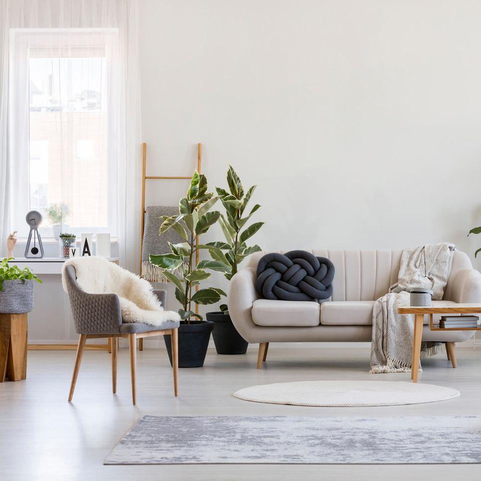 Bouclé: Wohnzimmer