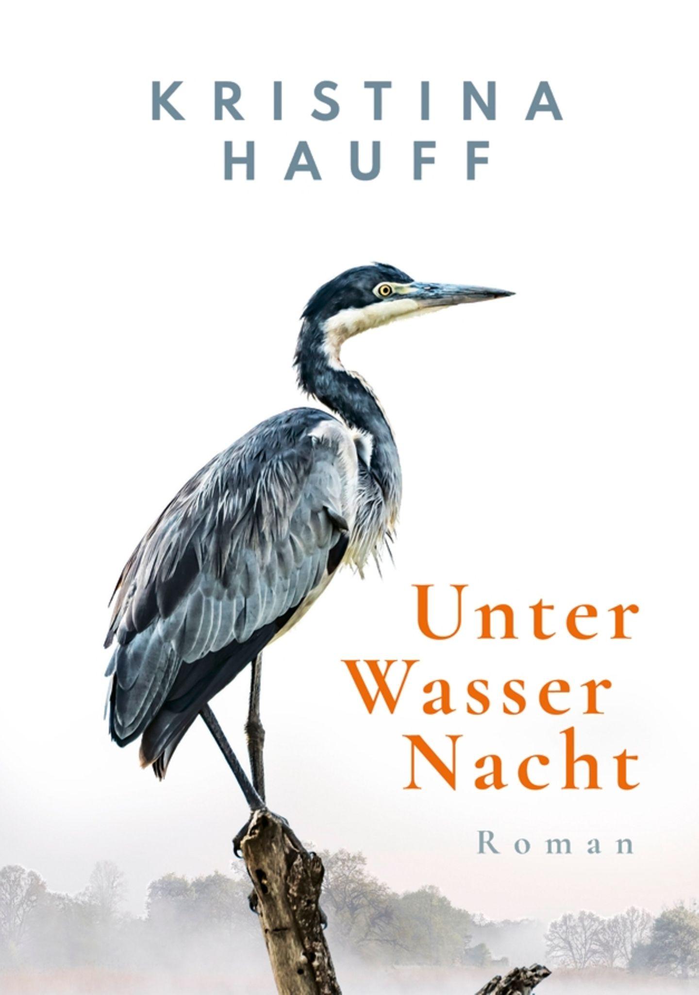 """Buchtipps der Redaktion: Buchcover """"Unter Wasser Nacht"""""""