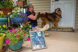 Bester Freund der Frau: Frau streichelt Hund