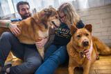 Bester Freund der Frau: Paar mit zwei Hunden