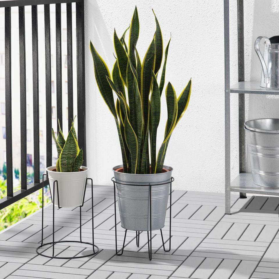 Ikea Pflanzenständer SVARTPEPPAR