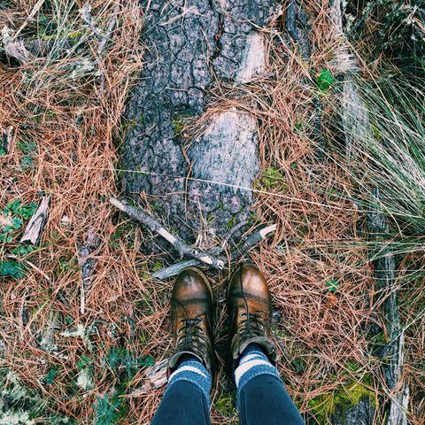 Bußgeld droht: 5 Dinge, die wir im Wald nicht tun dürfen