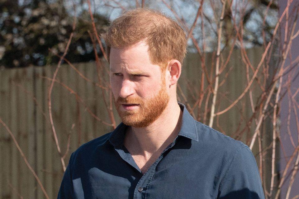 Prinz Harry wird 2022 nach Europa kommen