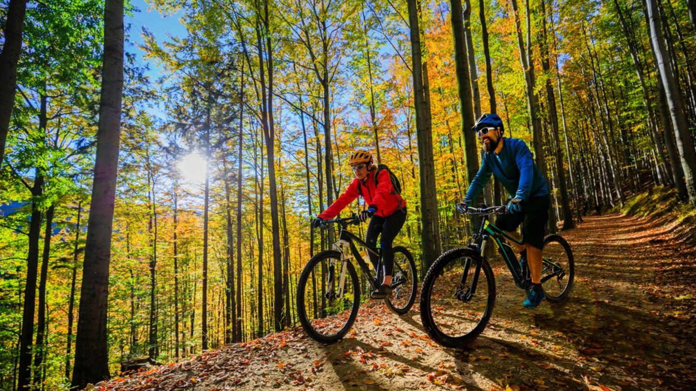 Bewegung ab 60: Paar fährt Rad