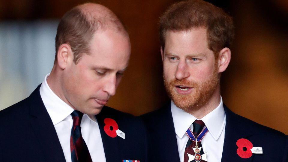 William und Harry: Diese Sätze lassen aufhorchen