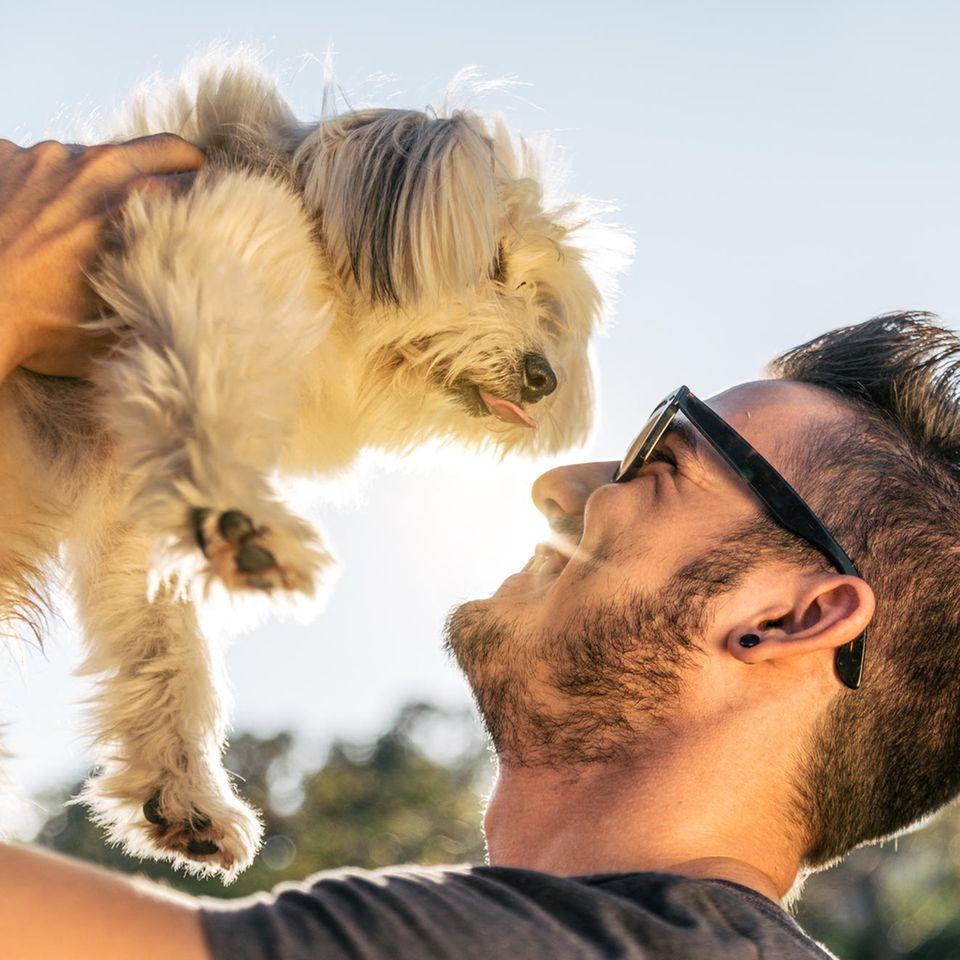 Dogfishing: Mann hält kleinen Hund