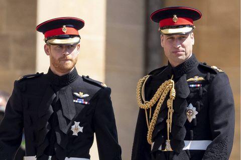 Prinz Harry + Prinz William: Schon zum dritten Mal müssen sie hinter dem Sarg eines geliebten Familienangehörigen herlaufen